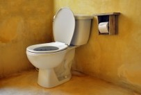 Poor Toileting Habits can Have a Negative Effect on Your Pelvic Floor